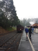 Puffing Billy!