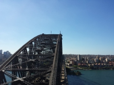 Harbor Bridge from Pylon Lookout