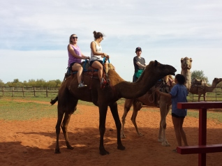Steph Riding a Camel