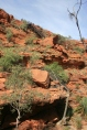 Kings Canyon: First glimpse of Pride Rock